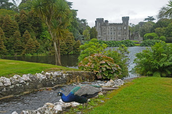 Johnstown Castle gardens